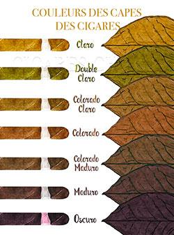 couleurs capes cigares