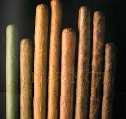 capes des cigares