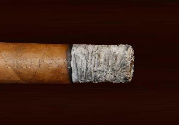 cendre plate cigare