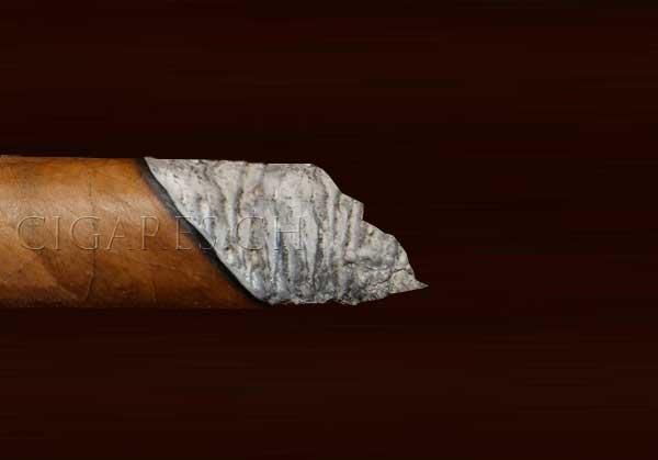 cendre irrégulière cigare