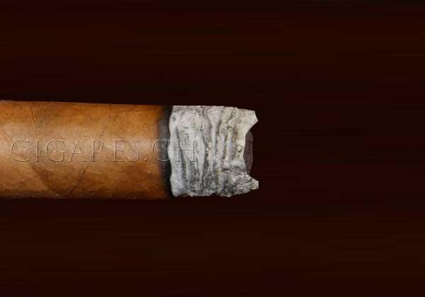 cendre forme cuillère cigare