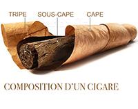 composition cigare