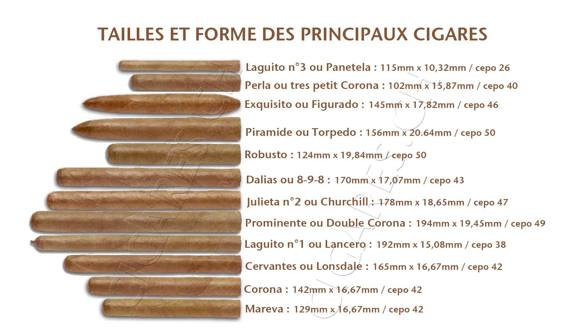 Modules et tailles des cigares