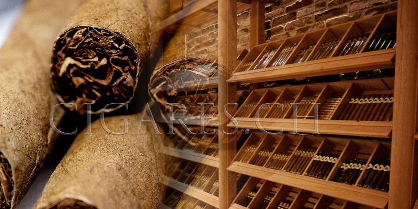 conservation des cigares. Black Bedroom Furniture Sets. Home Design Ideas
